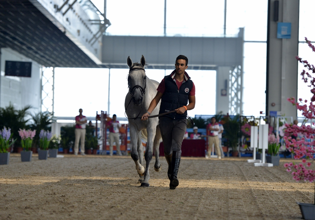 Nanjing 2014, Youth Olympic Games. Horse Inspection